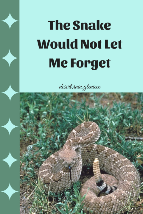 The Snake Would Not Let Me Forget ~ we would fight off a deadly snake to save our life. But do we coddle our sins? https://vineblossom.wordpress.com #spiritualbattles, #overcoming