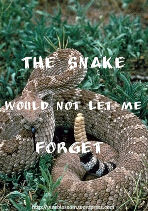 The Snake Would Not Let Me Forget ~ We would fight a deadly snake to save our life. But do we coddle our sins? https://vineblossom.wordpress.com