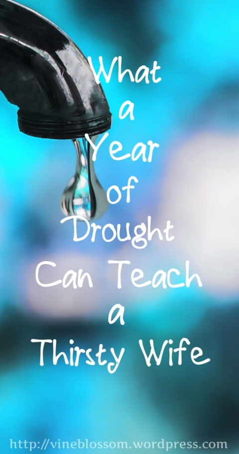 What a Year of Drought Can Teach a Thirsty Wife ~ We are all faced with a choice during our dry spells; wallow in the dust or reach for the Living Water to quench our weary souls. https://vineblossom.wordpress.com