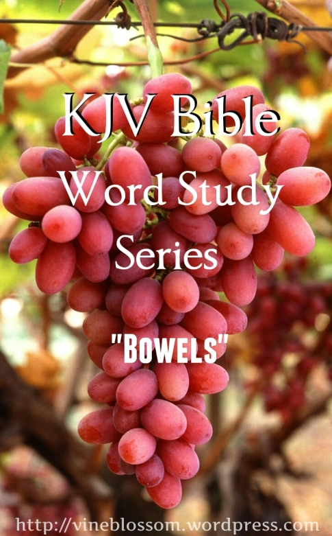 Bowels: KJV Bible Word Study Series ~Join me as I research many confusing or unfamiliar KJV words to broaden our understanding of scripture passages. https://vineblossom.wordpress.com