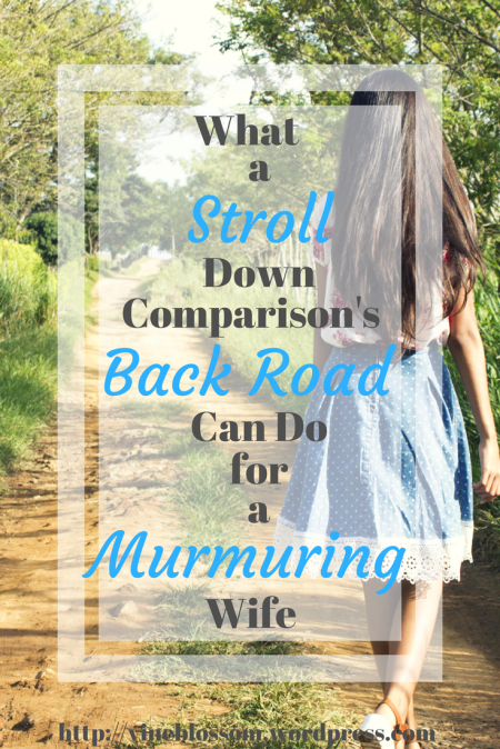 What a Stroll Down Comparison's Back Road Can Do for a Murmuring Wife ~ Look beyond the ugliness in your life, dear wife. Thankfulness is just around the corner. https://vineblossom.wordpress.com #contentment